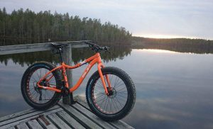 Martinselkonen Fat Bike